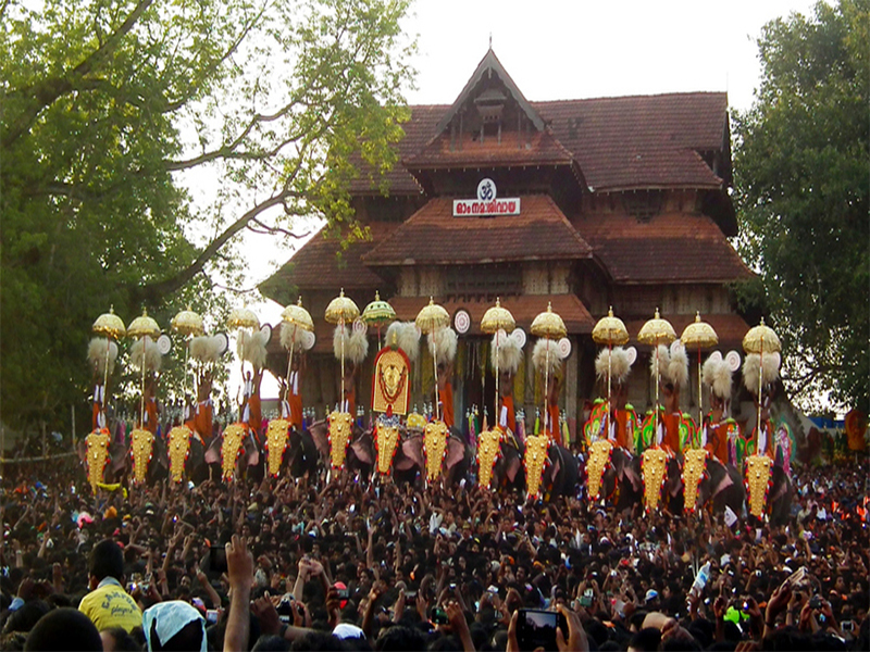 Elephants_in_pooram